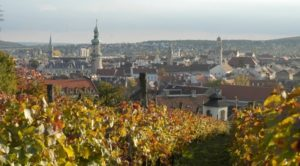Wine tour in Sopron wine region